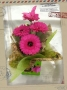 gerbera-butterfly-box